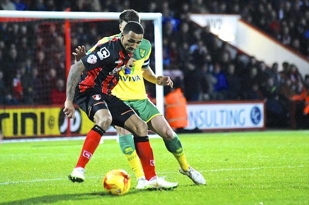 Photo: AFC Bournemouth